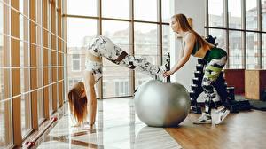 Bakgrundsbilder på skrivbordet Fitness Boll Fysisk träning Två 2 Unga_kvinnor