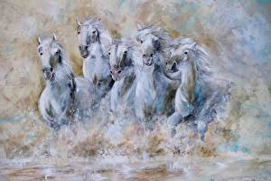 Wallpapers Horse Pictorial art Running White animal
