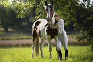 Hintergrundbilder Pferd Umarmung Uniform colt male Mädchens