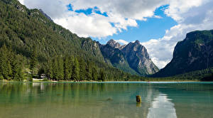 Image Italy Mountains Lake Forests Alps Lake Dobbiaco Nature