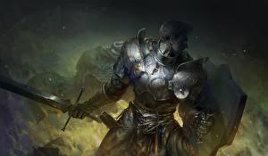 Images Knight Warriors Men Armor Swords Shield