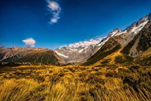 桌面壁纸,,新西兰,公园,山,Mount Cook National Park,