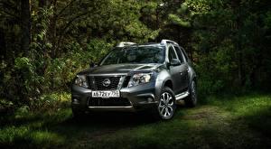 Fotos & Bilder Nissan Silber Farbe SUV Gras Strauch Terrano, RU-spec, 2014 Autos