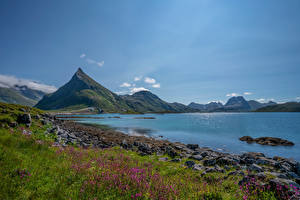 Picture Norway Mountain Stones Sky Lofoten fjord Nature
