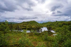 Tapety na pulpit Norwegia Park Drzewa Chmury Sjunkhatten National Park Natura