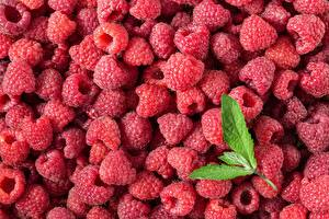 Pictures Raspberry Many Closeup Food