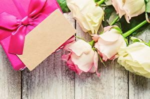 Hintergrundbilder Rose Valentinstag Vorlage Grußkarte Blüte