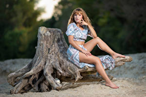 Pictures Tree stump Sit Legs Gown Staring Sophie female