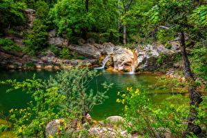 Fotos Spanien Wald Steine Bäche Catalonia Natur