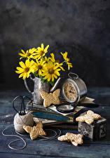Fotos & Bilder Stillleben Wecker Kekse Kamillen Bretter Lebensmittel