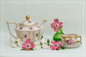 Fotos & Bilder Stillleben Pfeifkessel Blühende Bäume Grauer Hintergrund Tasse Vase Ast Blumen