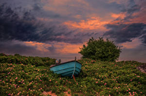 Wallpaper Sweden Sunrise and sunset Boats Sky Grass Shrubs Clouds Degeberga Nature