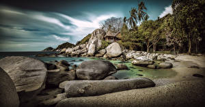 Pictures Thailand Coast Sea Stones Palm trees Koh Tao Nature