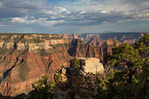 Bilder USA Parks Grand Canyon Park Canyon Felsen Arizona Natur