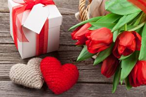 Pictures Valentine's Day Tulips Heart Gifts flower