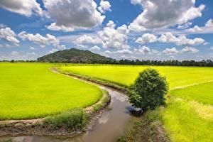 Bilder Vietnam Felder Kanal Wolke Trung Khanh District, Cao Bang (province) Natur