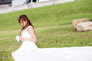 Pictures Asian Gown Grass Sitting Brown haired Brides Girls
