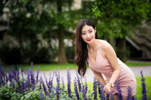 Fotos Asiatisches Kleid Lächeln Bokeh Mädchens