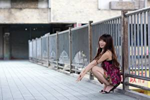 Images Asian Fence Brown haired Sitting Smile Blurred background young woman
