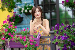 Hintergrundbilder Asiatische Posiert Hand Zopf Blick