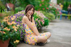 Hintergrundbilder Asiatisches Sitzend Kleid Zopf Lächeln Zunge Bokeh junge Frauen