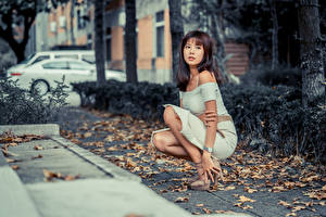 Images Asian Sit Dress Foliage Staring Girls