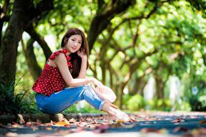 Bilder Asiatische Sitzt Jeans Bluse Der Hut Blick Bokeh Mädchens