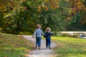 Pictures Autumn Grass Trail Two Boys Blurred background Leaf Back view Stroll child
