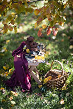 Picture Autumn Still-life Baking Branches Leaf Wicker basket Grass Food