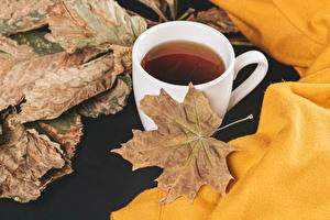 Picture Autumn Tea Leaf Mug Acer Food