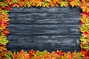 Bilder Herbst Vorlage Grußkarte Bretter Ahorn Blatt