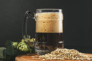 Picture Beer Humulus Mug Foam Grain Food