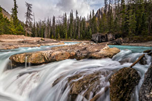 Pictures Canada Rivers Stone Trees British Columbia Nature