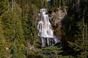 デスクトップの壁紙、、カナダ、滝、岩、木、Alexander Falls、