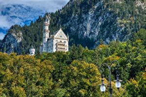 Pictures Castle Germany Forest Neuschwanstein Bavaria Rock Street lights Bavarian Alps, Schwangau Nature
