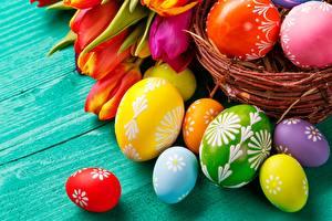 Bureaubladachtergronden Van dichtbij Eieren Veelkleurige