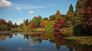 Bilder England Herbst Teich Bäume Sheffield Park