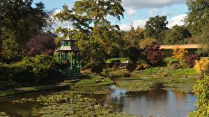 Wallpapers England Autumn Pond Trees Water Garden, Cliveden