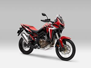 Images Honda - Motorcycles Gray background Red CRF 1000 D AFRICA TWIN, 2020
