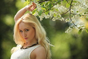 Picture Rachelle Summers Blonde girl Glance Branches Bokeh young woman