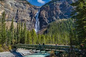 Обои Реки Мосты Леса Горы Водопады Парки Канада Yoho National Park Природа картинки