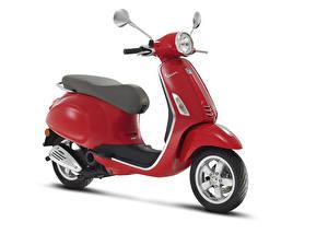 Обои для рабочего стола Мотороллер Красный Белым фоном Vespa Primavera 50 2T, 2013–17 мотоцикл