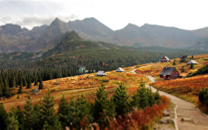 Desktop wallpapers Slovakia Mountains Autumn Village Blurred background Tatra Mountains Nature