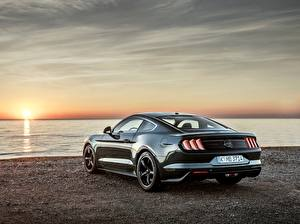 Wallpaper Sunrise and sunset Ford Back view Metallic 2018 Bullitt Mustang automobile
