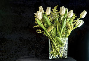 Pictures Tulips Gray background Vase White flower