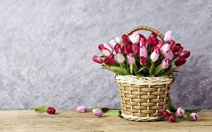 Images Tulip Wicker basket Template greeting card Flowers