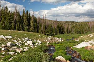 Hintergrundbilder Vereinigte Staaten Wald Steine Bach Wolke Medicine Bow-Routt National Forest Natur