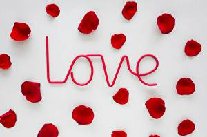 Pictures Valentine's Day Petals Word - Lettering English