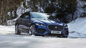 Bilder Winter Jaguar Schnee Blau Crossover xf, p300, awd, r-dynamic Autos