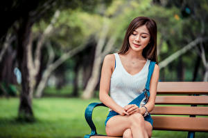 Pictures Asian Bench Sit Bokeh female